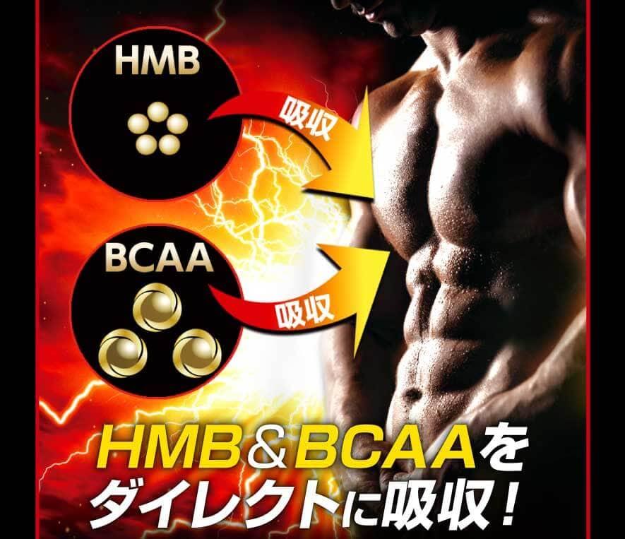必須アミノ酸BCAAをダイレクトに筋肉へ!