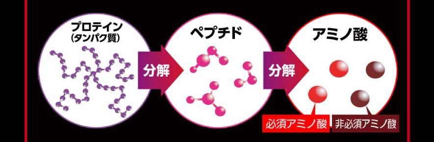 BCAAの説明図